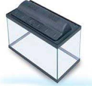 All Glass Aquarium AAG09008 Tank and Eco Hood Combo, 5.5-Gallon