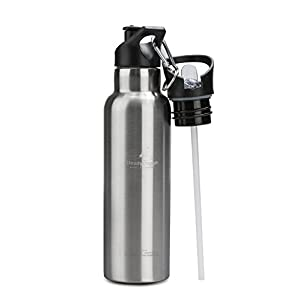 Stainless Steel Water Bottle Vacuum Insulated Water Bottle Double Walled Water Bottle with Dual Lids Straw Lid and Sports Lid with Carabiner