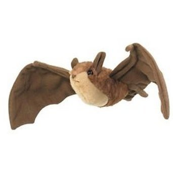 8 Inch Conservation Critter Brown Bat Plush Stuffed Animal by All Seven -