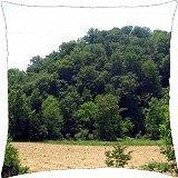 Kentucky Farmland - Throw Pillow Cover Case (18