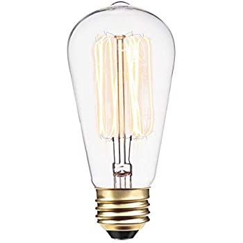 e7e69e918ee Globe Electric 60W Vintage Edison S60 Squirrel Cage Incandescent Filament Light  Bulb