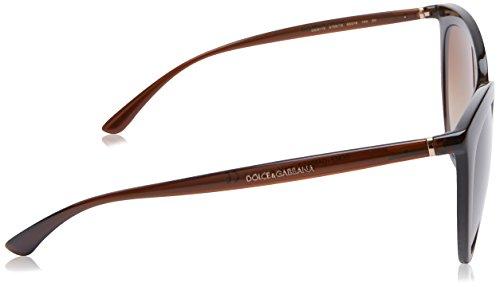 para Brown 0Dg6113 Gafas de Gabbana Mujer Dolce amp; Transparente Marrón Sol wvqYtCf