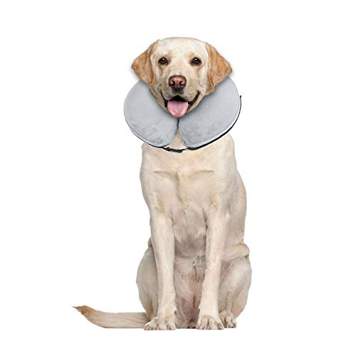 dog blow up cone - 6