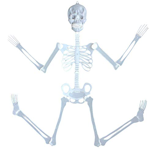 (HABIB ZUOR 30cm Luminous Skull Skeleton Body Scary Halloween Toy Haunted House Tricky Prop Halloween Toy for Halloween (AS)