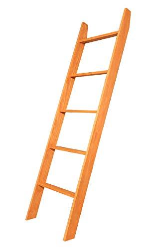 Storage Closet 72' (BrandtWorks Maple Ladder 20'' x 72'')