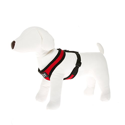 Joy Small Dog Adjustable Harness – No Pull Vest Harnesses for Small Dogs & Cats – Comfortable & Soft Mesh Pet Walking…