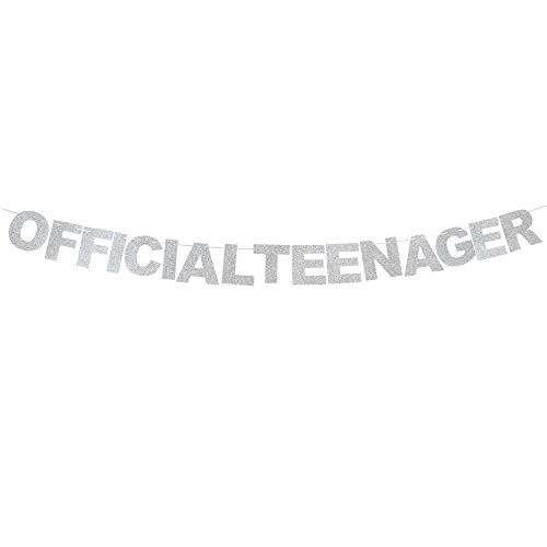 Official Teenage Silver Glitter Bunting Banner 13th Birthday Party Decoration Creative Sign Supplies -