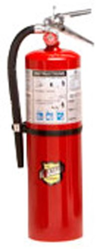 Buckeye 11341 ABC Multipurpose Dry Chemical Hand Held Fir...