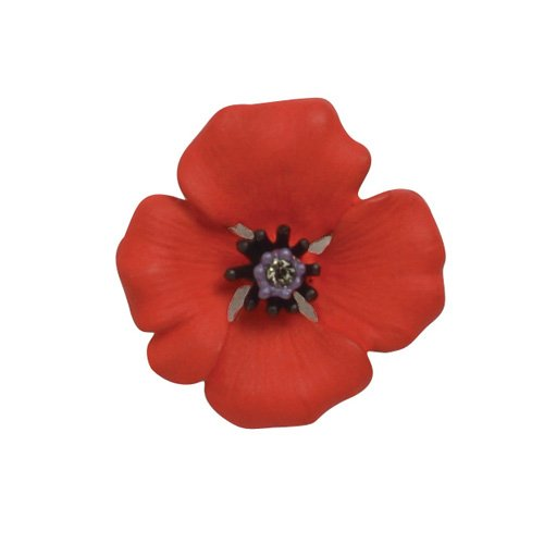 PYNK Jewellery Petit émail rouge et cristaux Swarovski-Pavot Passion Broche