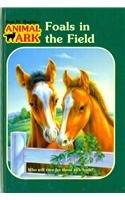 Read Online Foals in the Field (Animal Ark (Pb)) PDF
