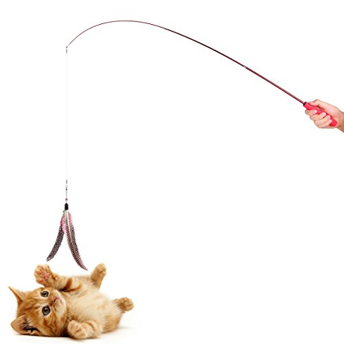 ONEVER Teaser Cat Catcher | Retractable Fishing Pole Wand Rod | 2pcs Large Assorted Feather Toy | Great for Kitten Dog Exercising
