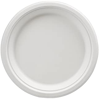 AmazonBasics Compostable 9-Inch Plates, Pack of 125