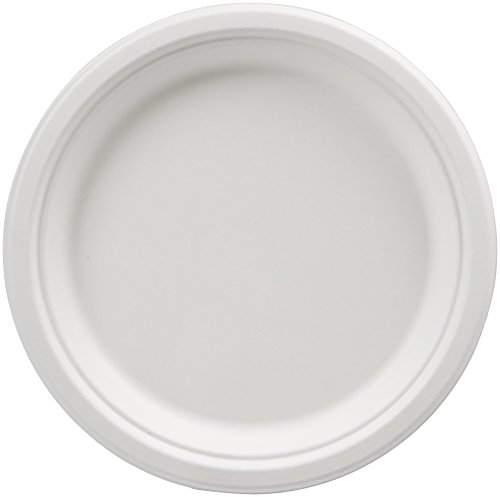 AmazonBasics Compostable Plates, 9-Inch, 500-Count - Food Service Plate