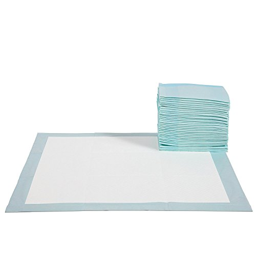 Paws Pals Training Potty Pads product image