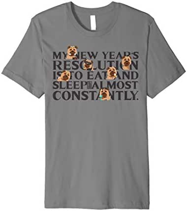 FUNNY EAT SLEEP LAZY PUG DOG NEW YEAR'S RESOLUTION Premium T-Shirt