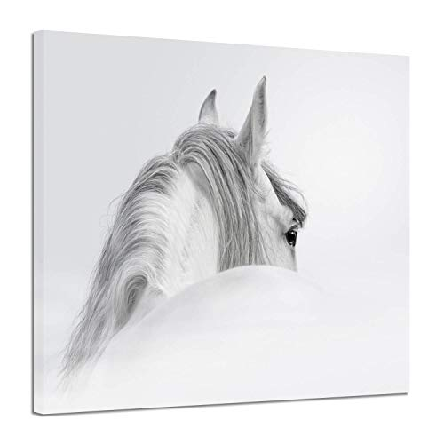 Horse Canvas Art Wall Decor: Animal Picture White Mystical for sale  Delivered anywhere in USA