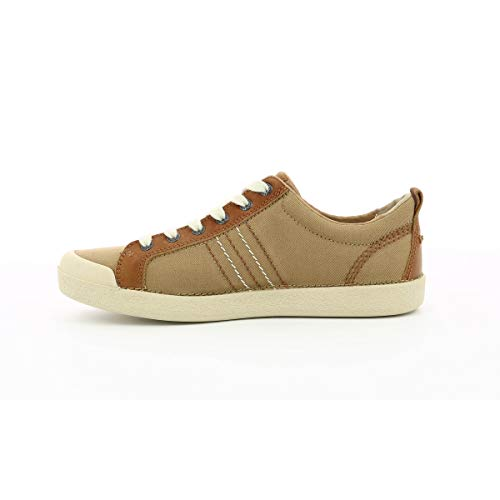 Trident Trident Trident Basse Basse Homme Marron Marron Sneakers Homme Sneakers OFZx5wngq
