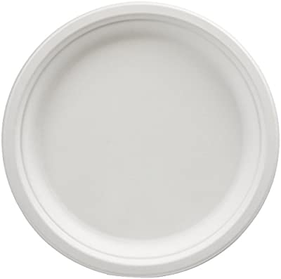 AmazonBasics Compostable Plates, 500-Count