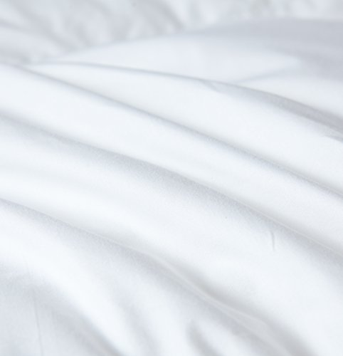 Acrafsman Goose Down Comforter Queen,1200Thread Count 100% Egyptian Cotton Fabric,Medium Warmth All Season Down Duvet Comforter 700+Fill Power Queen Size Comforter(White,90x90inches)