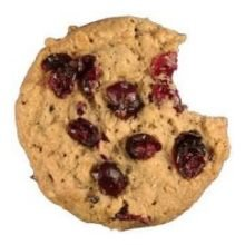 Davids Cookies Orange Cranberry Oatmeal Cookie Dough, 1.5 Ounce -- 213 per case. by David's Cookies