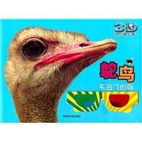 Ostrich: flightless bird (Animal Planet 3D Popular Science)(Chinese Edition) ebook
