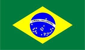 Amazon.com : brasil Brazilië Brazil Brésil Brasile flag