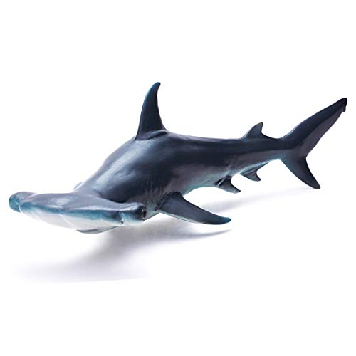 Replica Hammerhead Shark - RECUR Toys Hammerhead Shark Figure Toys, Hand-Painted Skin Texture Ocean Shark Figurine Collection-10.8inch Realistic Design Shark Replica 1:15 Scale, Gift for Collectors and Boys Kids , Ages 3 And Up