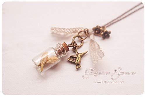 Collar botella jazmín, flores secas en collar de botella collar collar, collar de terrario