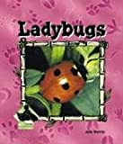 Ladybugs, Julie Murray, 1577657217