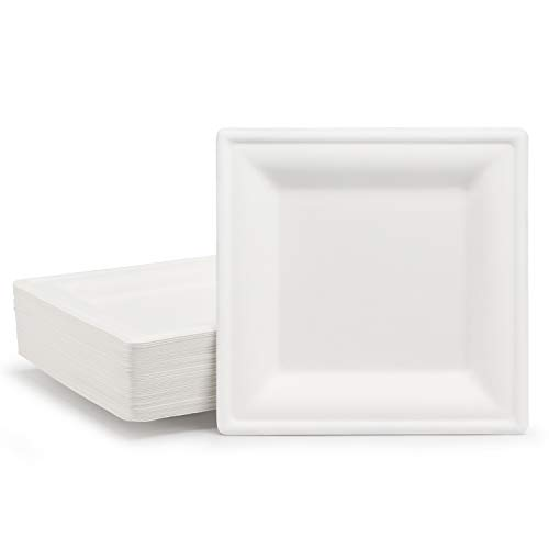 Disposable Paper Plates 50 Pack, EUSOAR 6-inch Paper Dishes Square Appetizer Dessert Plates,Dinner BBQ White Eco Paper Plates Set