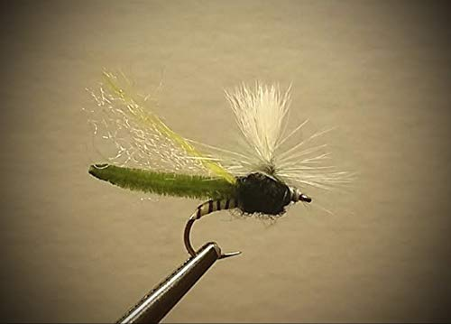 Parachute Caddis Olive - 1 Dozen - Parachute Spotlight Caddis Olive - Dry Fly - Trout Fly Fishing Flies Lures Strong Fish Hooks for Trout