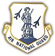 US Air Force Air National Guard Lapel (National Guard Lapel Pin)