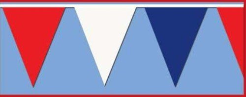 Beistle 50700-RWB Red Blue Outdoor Pennant Banner, 17 by 120-Feet]()