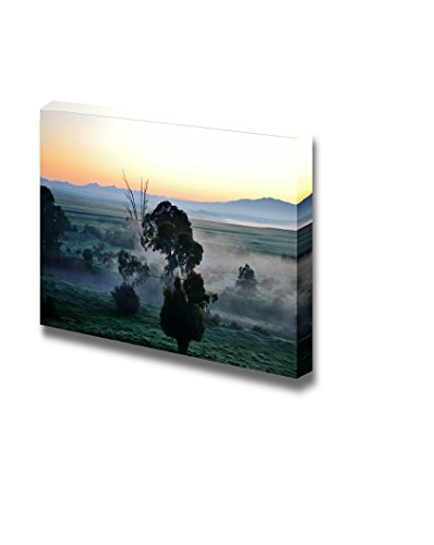 Landscape with Blue Gum Trees in Fog at Sunrise Wall Decor ation