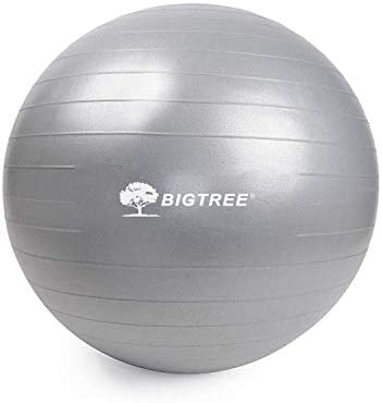 Bigtree Yoga Ball Exercise Fitness Core Stability Balance Strength Anti-Burst Heavy Duty Gray 21.6 55cm