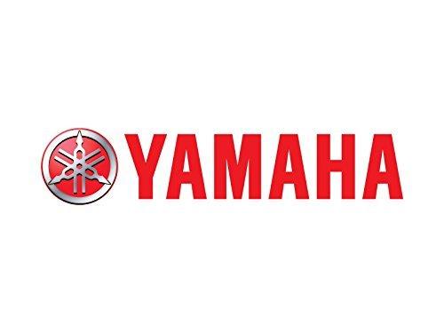 YAMAHA SMA-DY665-80-00 Woody's Dooly Carbide Wear Bar SXViper ()
