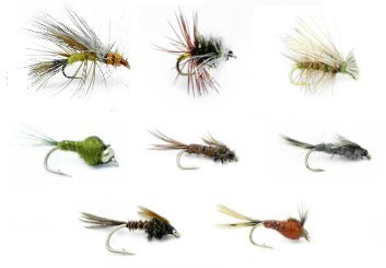 Feeder Creek Fly Fishing Assortment for Trout and Other Freshwater Fish - 32 Hand Tied Fishing Flies - 8 Patterns Wet and Dry Flies - Stimulator, Renegade, Caddis, Bead Head (Steelhead Fly Assortment)