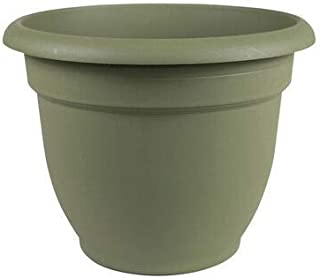product image for Bloem Ariana Self-Watering Planter, 168221;