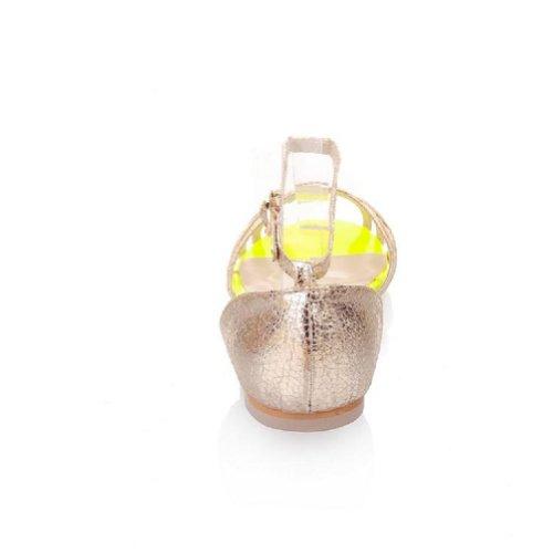 Gloednieuwe Zomer Mode Dames Platte Sandalen Schoenen Wij Maat 4.5-14 Goud