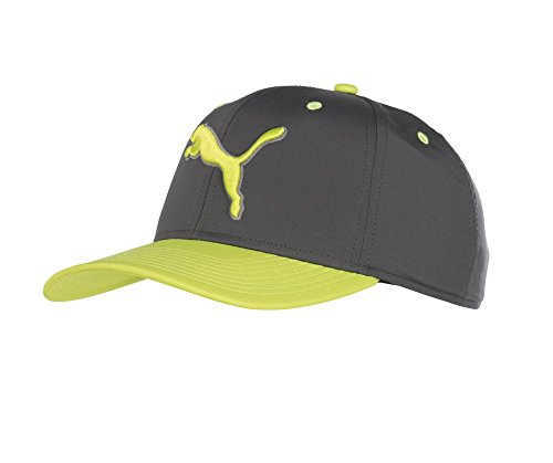 Puma Golf 2018 Men's Go Time Hat (Quiet Shade-Acid Lime, One Size) ()