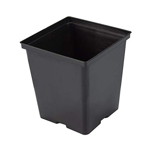 (1 Gallon Square Black Plastic Nursey Plant Pots Holds 0.38 Gal (25)
