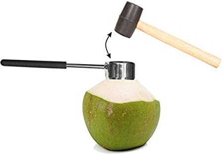 Amazon.com: Abridor de coco con martillo de acero inoxidable ...