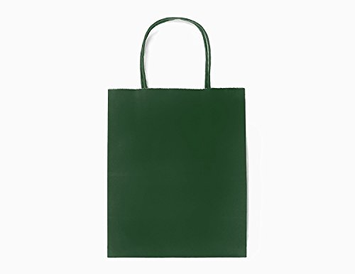 Evergreen Bag - 24CT MEDIUM EVERGREEN BIODEGRADABLE, FOOD SAFE INK & PAPER, PREMIUM QUALITY PAPER (STURDY & THICKER), KRAFT BAG WITH COLORED STURDY HANDLEs (Medium,Evergreen)