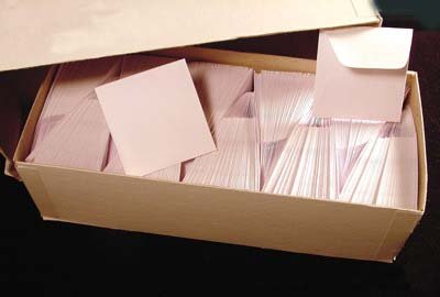 500 2x2 White Paper Coin Envelopes
