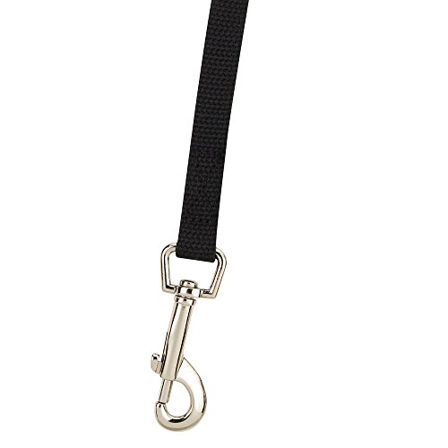 Guardian Gear Cotton Web Dog Training Lead 20'x5/8