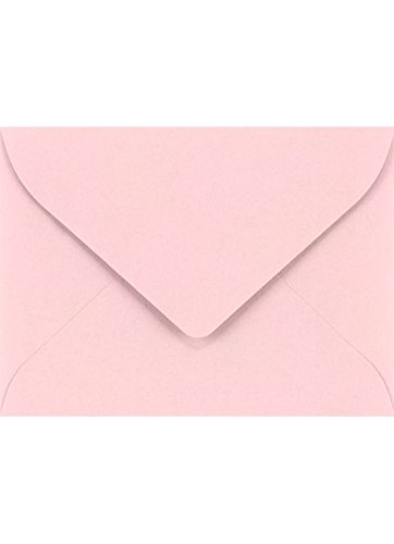 nvelopes (2 11/16 x 3 11/16) - Candy Pink (50 Qty.) | Perfect for the Holidays, Holding Place Cards, Gift Cards, Notes, and Flower Arrangement Cards |EXLEVC-14-50 (Pink Flower Note Card)
