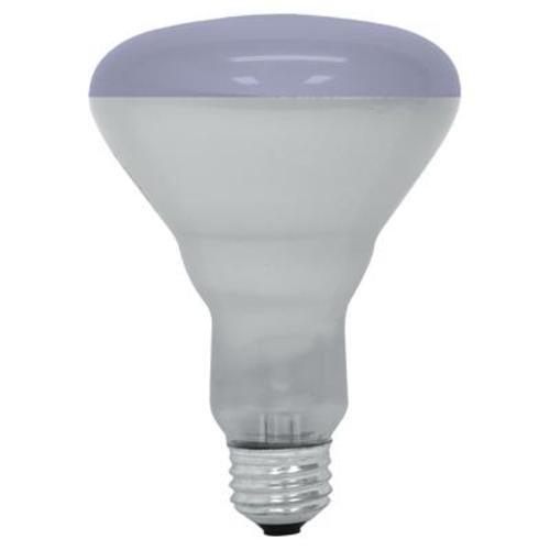 GE Lighting 20996 65-Watt R30 Plant Flood Light Bulb, Plant