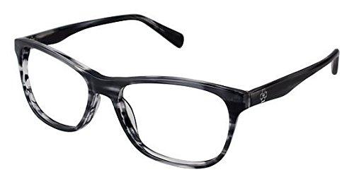 Ann Taylor AT317 Eyeglass Frames - Frame BLACK HORN, Size - Taylor Eyeglasses