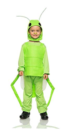 Flying Grasshopper Child Costume - -