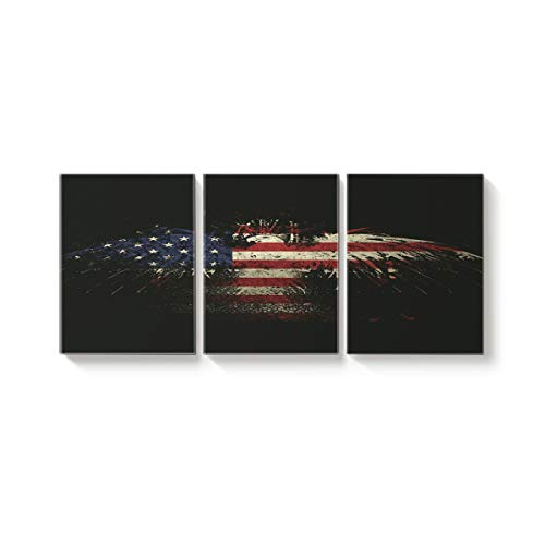 Arts Language 3 Piece Canvas Wall Art Painting for Office Bedroom Living Room Home Decor,The Eagle Flag of The America Pictures Modern Artworks,24 x 32in x 3 Panels